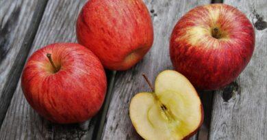 सेब से जुड़े रोचक तथ्य
